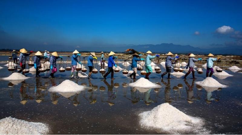 Từng hàng những người dân đang gánh muối về kho