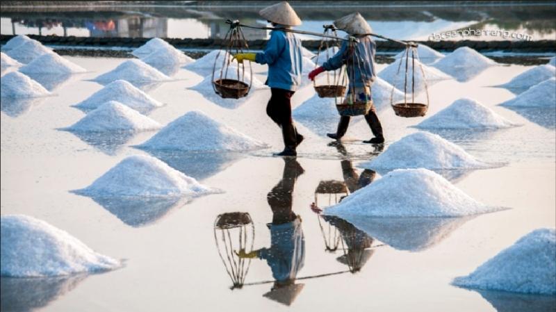 Những đống muối cao đang được thu gom lại