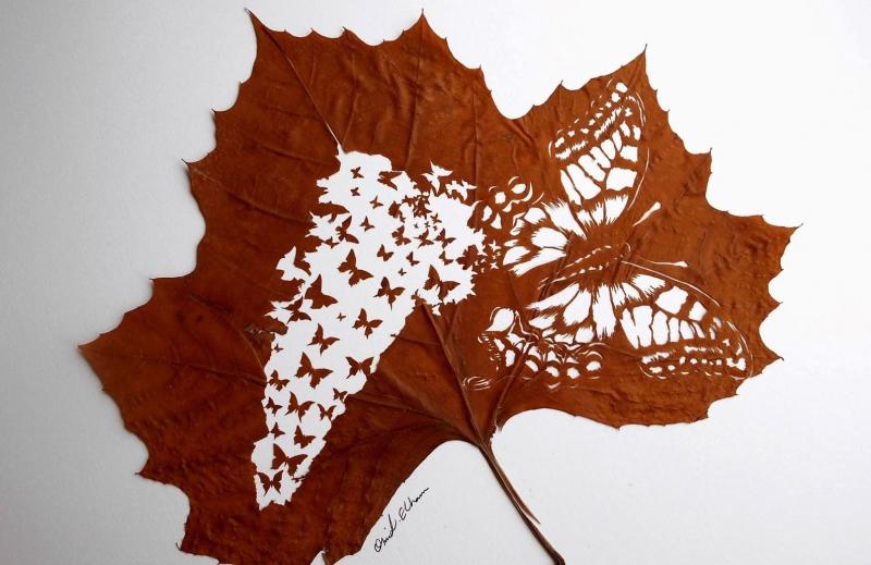 Những chiếc lá khô