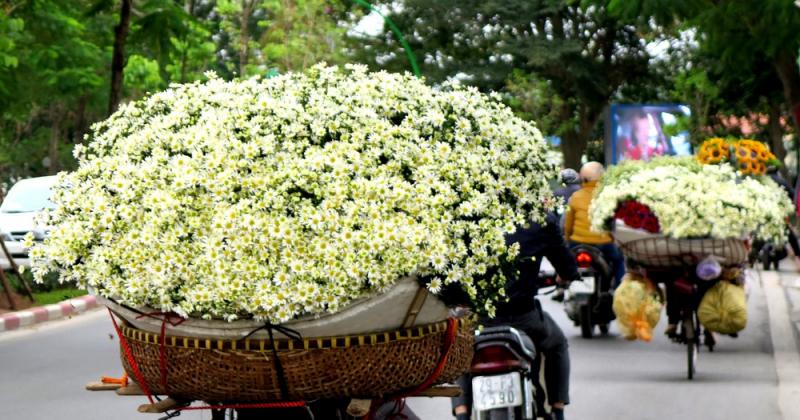 Những gánh hoa ven đường