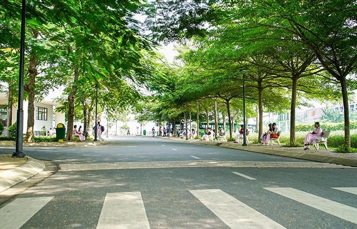 Những góc xanh nơi sân trường