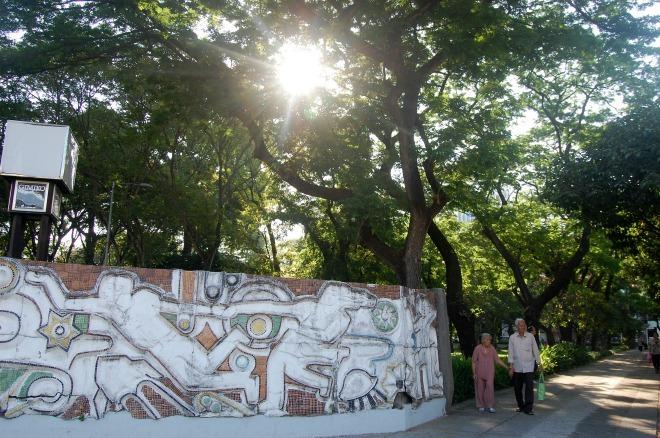Những hàng cây cổ thụ hàng trăm tuổi gắn liền với nhiều thế hệ những người Sài Gòn