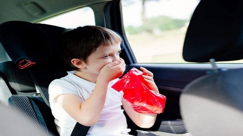 Những loại thực phẩm giúp chống say xe