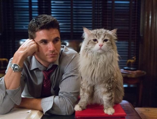 Nine Lives - Bố tôi là mèo
