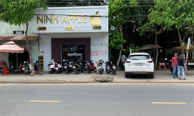 Ninh Apple