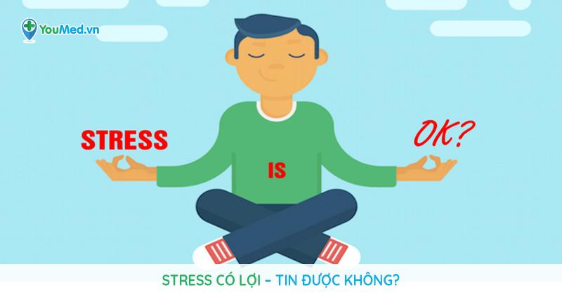 Nói không với căng thẳng