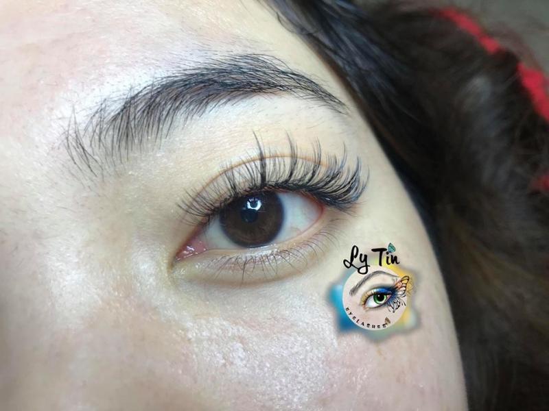 Nối Mi Ly Tin Eyelashes