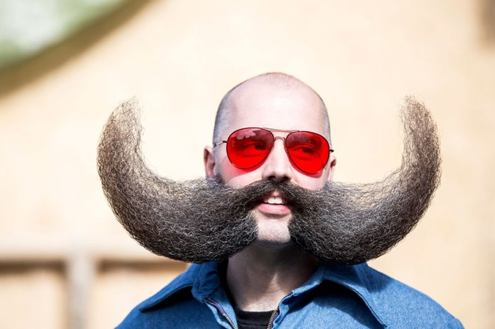 Nộp thuế vì... râu