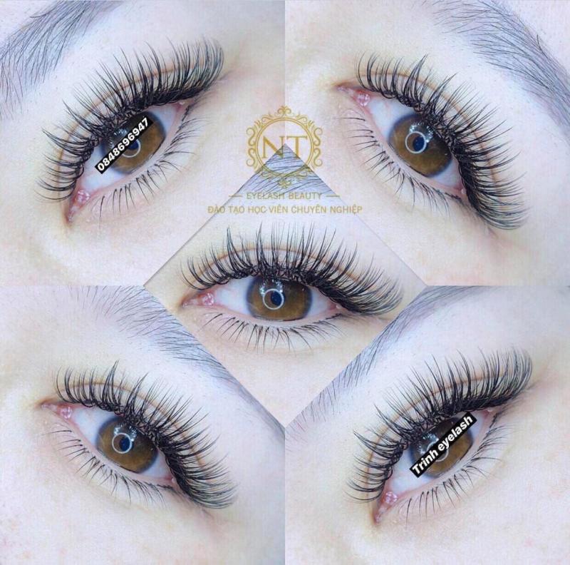 NT Beauty Eyelashes