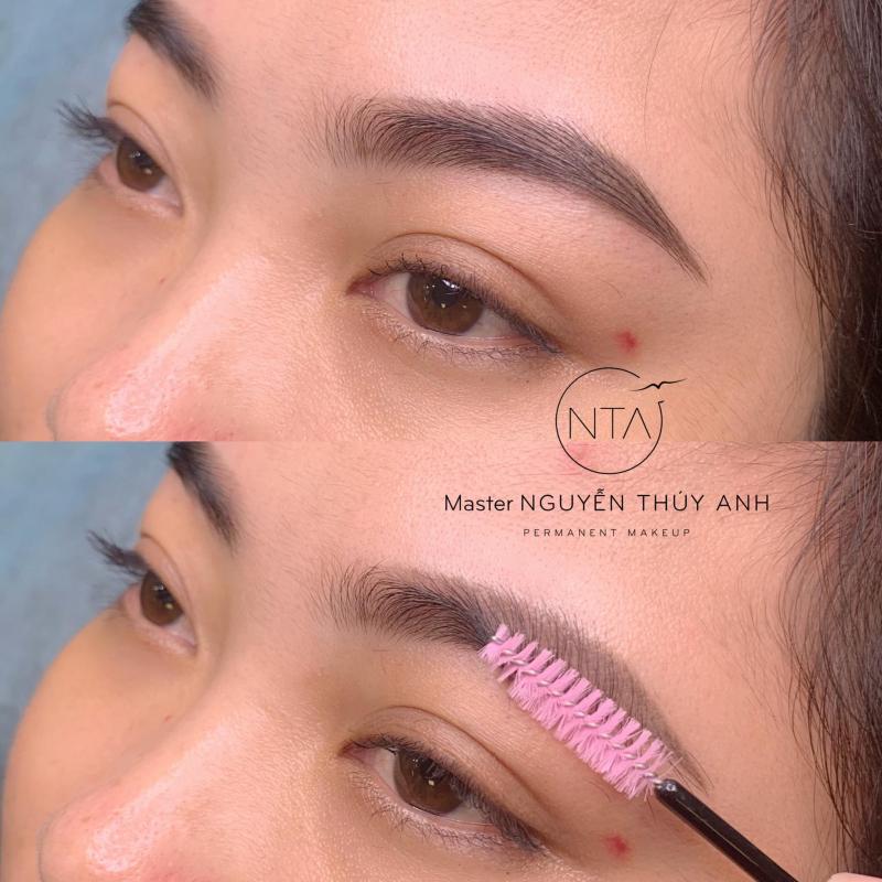 NTA Permanent Make Up