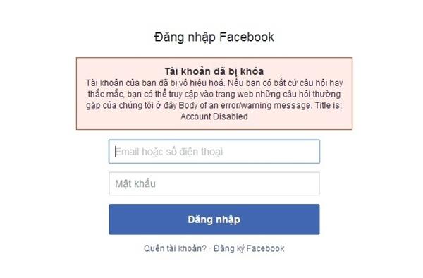 Ntco.co cung cấp dịch vụ Facebook một cách nhanh chóng và hiệu quả