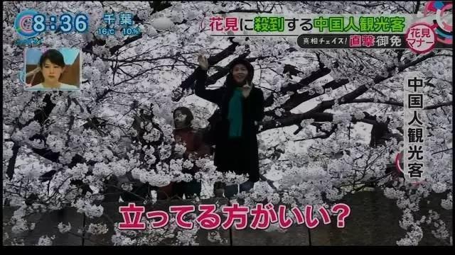 Hành vi của nữ du khách được đưa tin trên truyền hình Nhật Bản - Nguồn: Sưu tầm