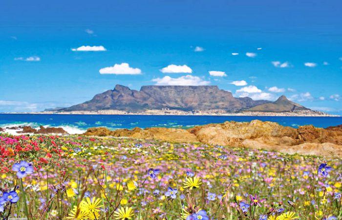 Núi Bàn - Nam Phi