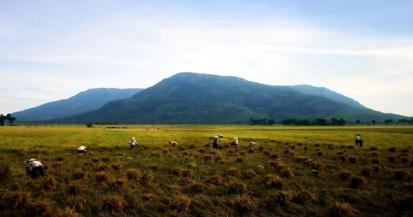 Núi Cấm Sơn