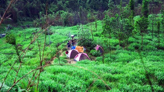 Cắm trại tại núi Chứa Chan