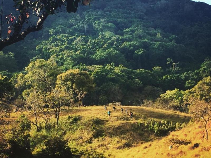 Phong cảnh thiên nhiên hùng vĩ của ngọn núi