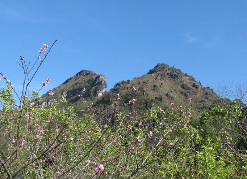 Núi Hàm Rồng vào mùa xuân