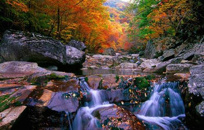 cảnh đẹp như bức tranh trên núi Jirisan
