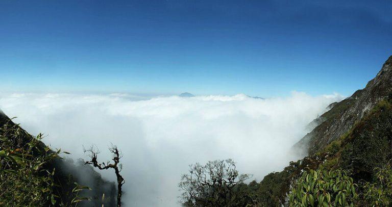 Núi Muối (Bạch Mộc Lương Tử)