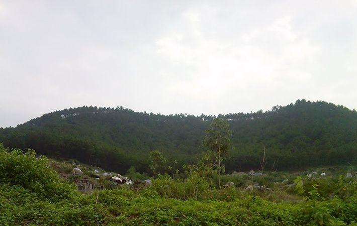 Núi Ngự