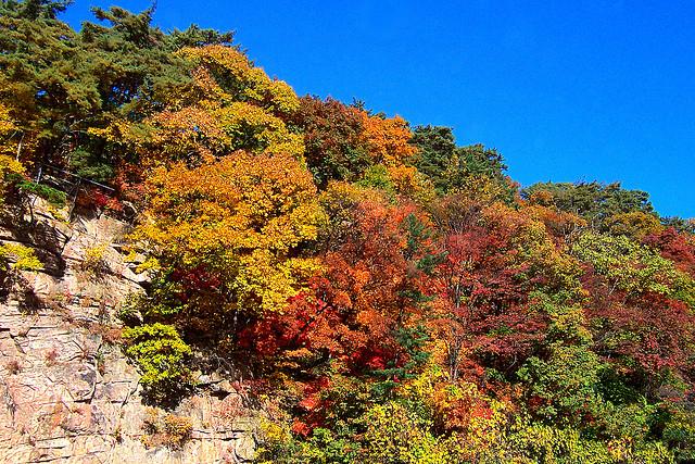 Cảnh đẹp đến mê mẩn trên ngọn núi Songnisan