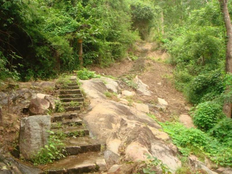 Con đường lên đỉnh Tà Cú