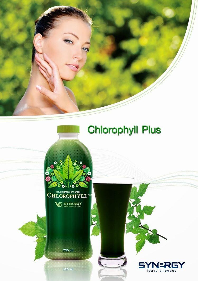 Nước diệp lục Chlorophyll Synergy