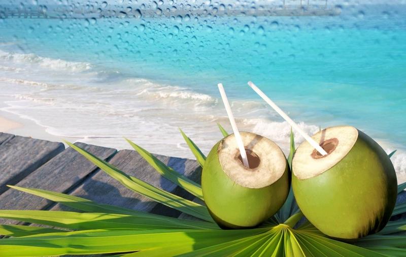 Nước dừa là thức uống giải khát tốt cho sức khỏe