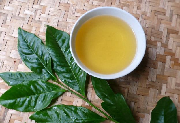 Nước trà xanh vừa chữa bệnh vừa làm đẹp