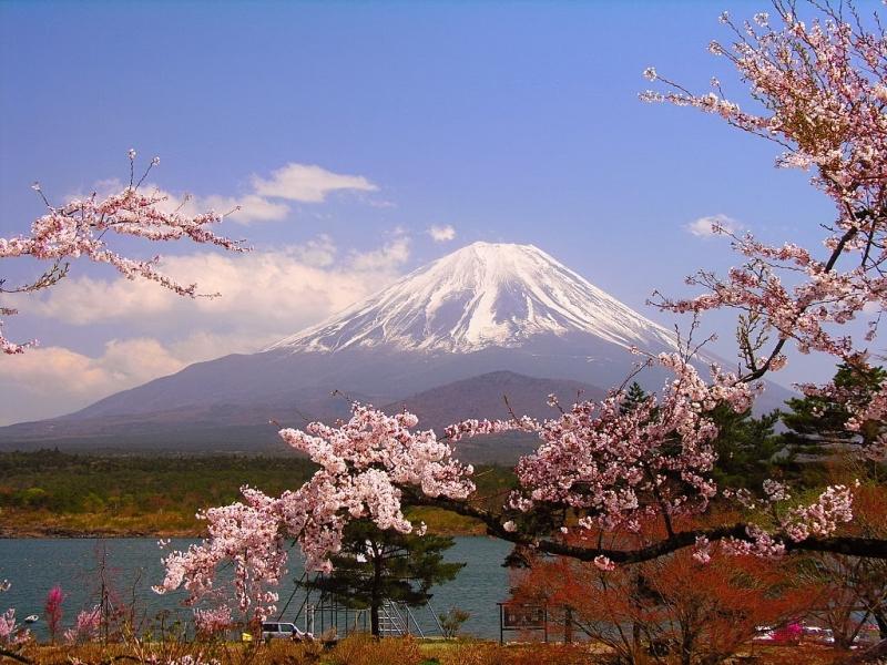 Dễ dàng sống và làm việc tại Nhật Bản