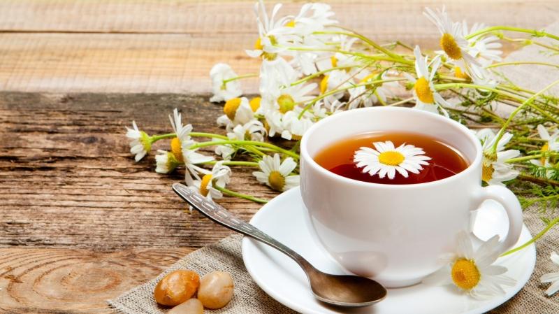 Trà thảo mộc hoa cúc