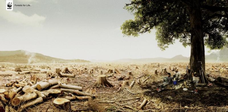 Sa mạc khô cằn trong poster tuyên truyền của WWF