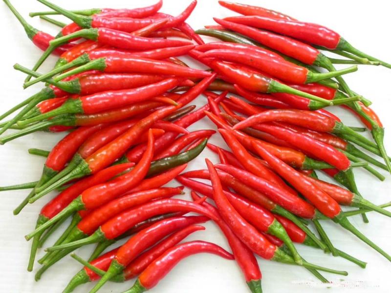 Ớt thúc đẩy quá trình đào thải chất béo, ngăn không cho chúng tích lũy trong cơ thể nhờ hàm lượng capsaicin có trong ớt.