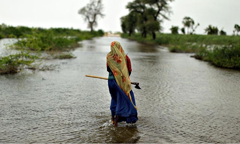 Số người thiệt mạng/năm do biến đổi khí hậu ở Pakistan là 150.000 người