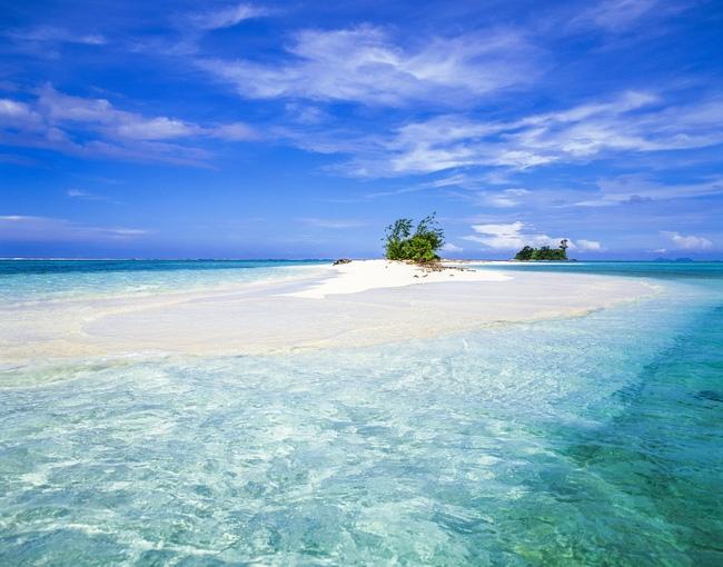 Giữa lòng Thái Bình Dương