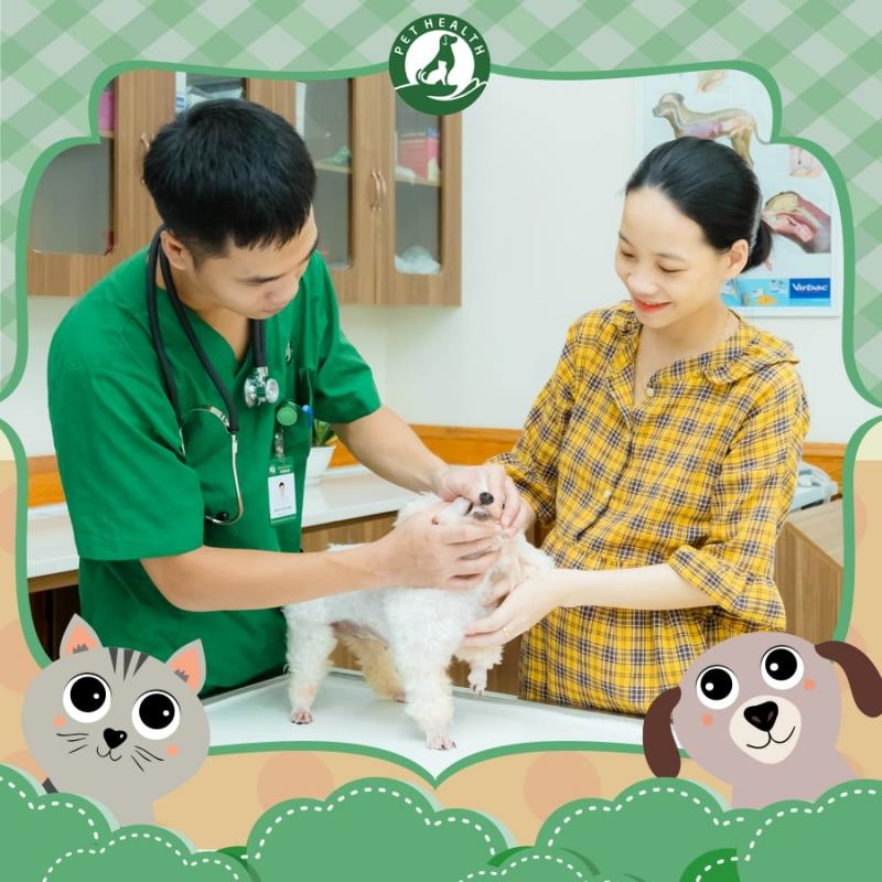 Pet Health là địa chỉ chăm sóc chó mèo uy tín tại Hà Nội