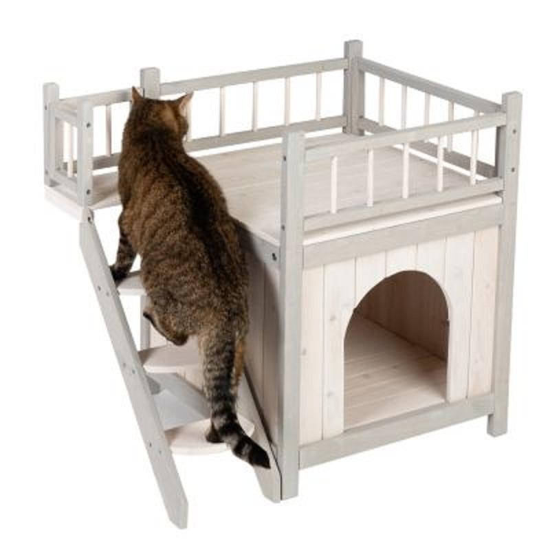 Giường cho Cat