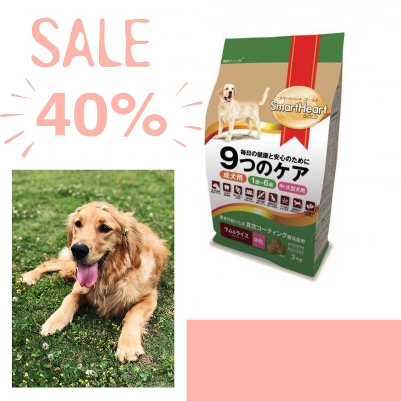 Pet Shop Phượng Điệp