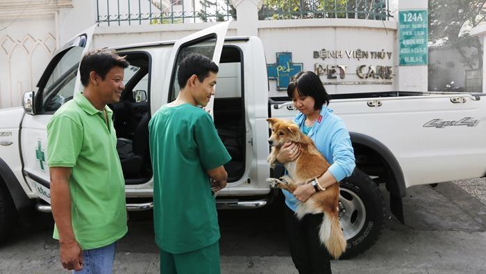 Thú cưng được chăm sóc tại Petcare An Việt