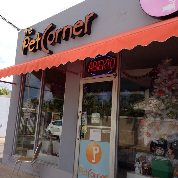 Petcorner là quán cà phê dành cho những tín đồ yêu thú cưng
