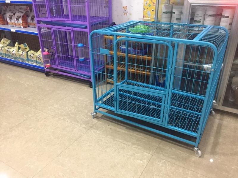 PG Pet Shop
