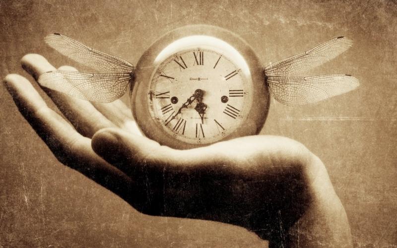 Phân bố thời gian cụ thể cho mỗi câu hỏi, lưu ý tốc độ càng nhanh càng tốt