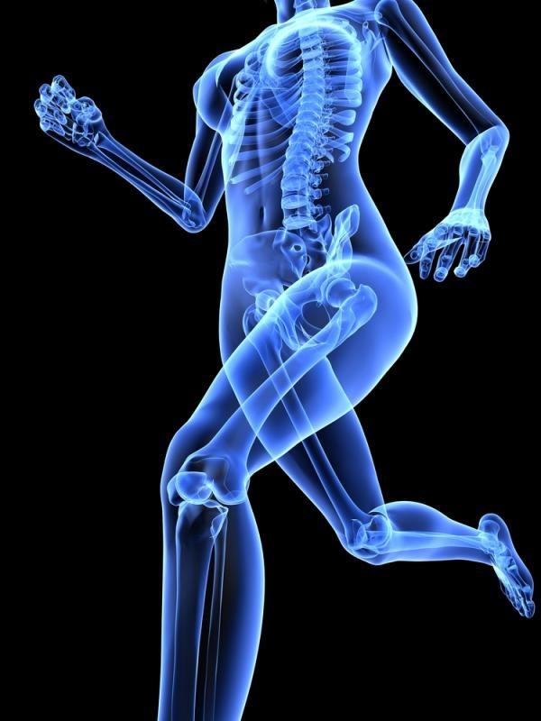 Phát triển xương