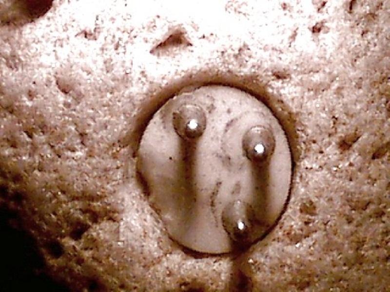 Hóa thạch này có hơn 100.000 năm tuổi.