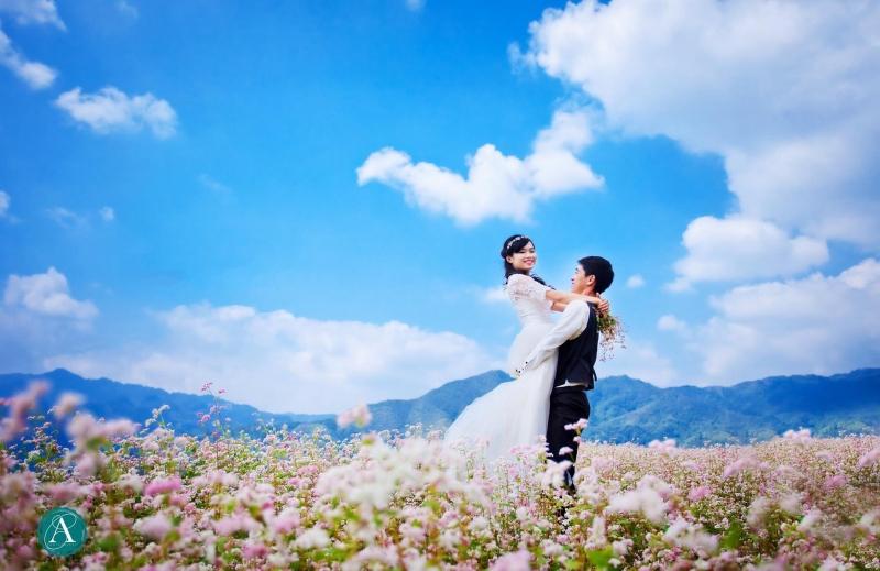 Phong cảnh mùa hoa Tam Giác mạch - Hà Giang: