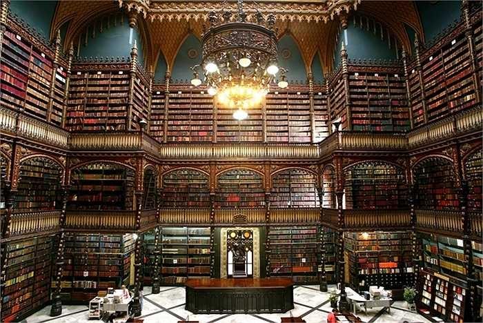 Căn phòng tuyệt đẹp này là nơi của hơn 350.000 tác phẩm và bộ sưu tập lớn nhất.