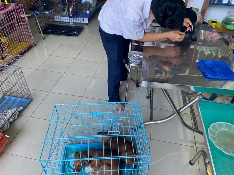 Phòng khám thú y_Titi Pet Shop