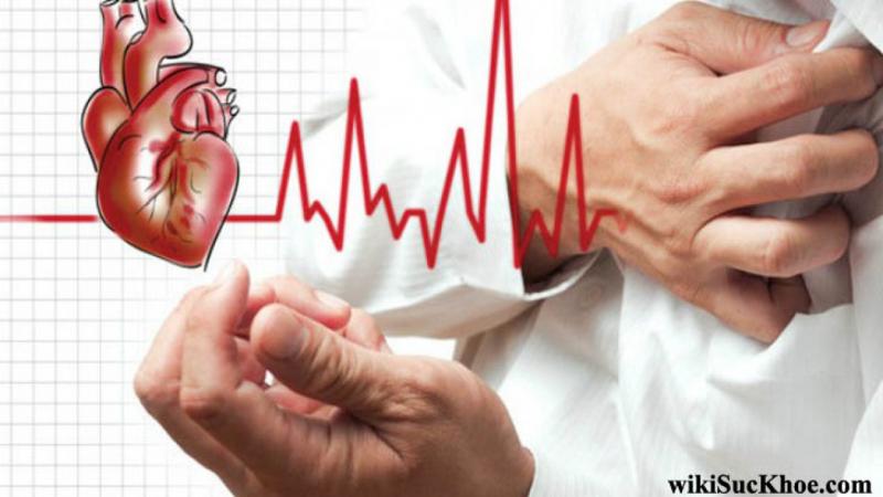 Phòng ngừa các bệnh tim mạch
