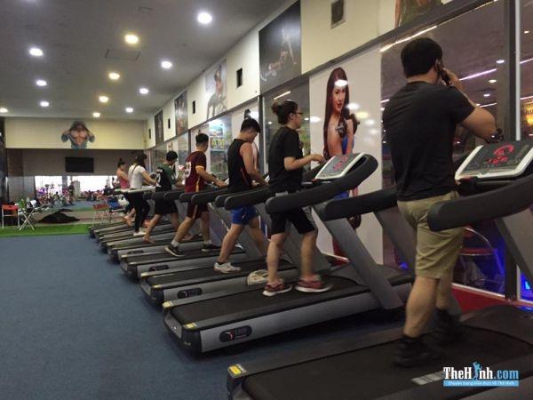 Phòng Tập Gym King Fitness