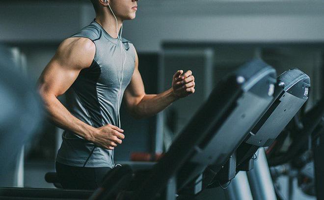 Top 5 Phòng tập Gym uy tín và chất lượng nhất Hà Nam